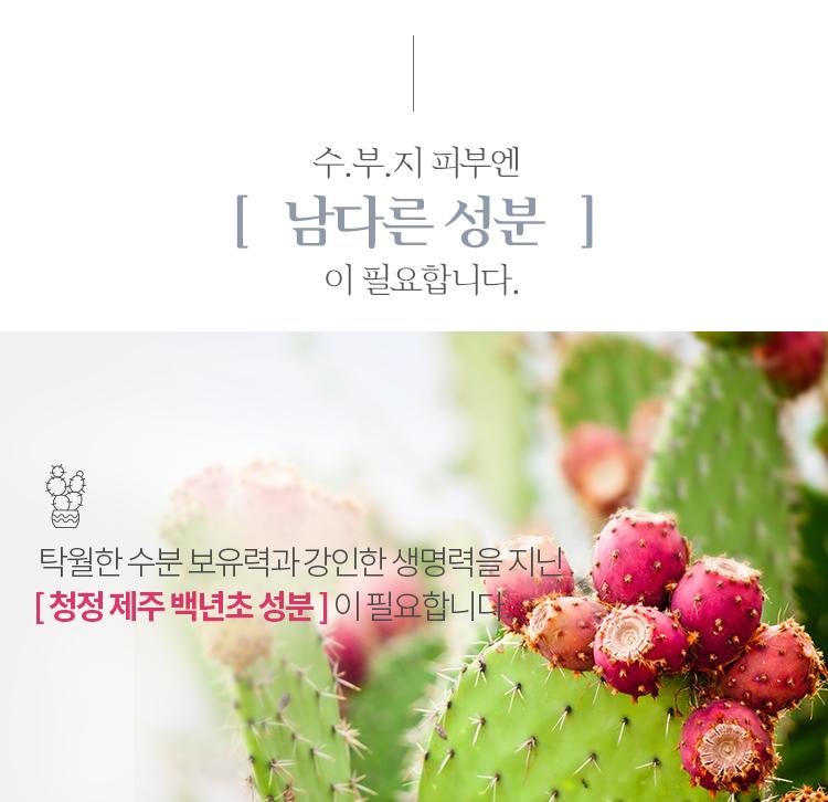 Apieu-SOOBOOJI-Finish-Cream05.jpg